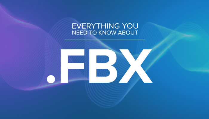 Everything You Need to Know About Using FBX Files